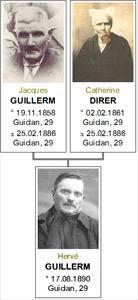guillerm-herve-arbre-genealogique